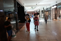 mascote-mickey-minnie-animatori-copii